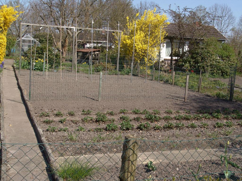 Gemüsegarten: Anbauplan Und Viel Fachliches Wissen Selbstversorger Garten Anlegen Obst Gemuse